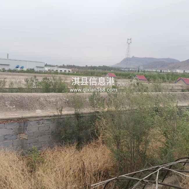 出租水泥大棚,林地,用于种植养殖。